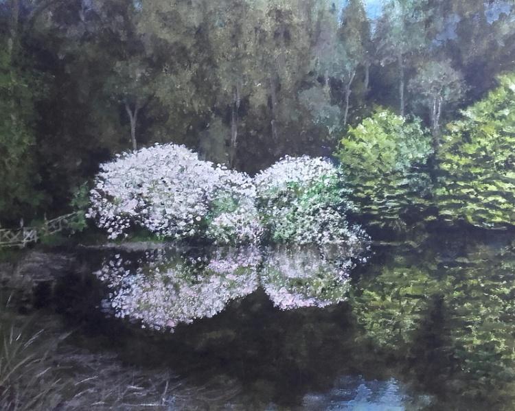 Reflections, Lake